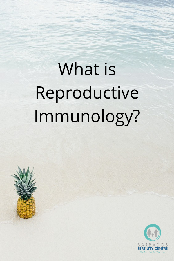 We don't like unexplained infertility, so we find explanations. One common explanation that is often overlooked is reproductive immunology. If you've experienced failed cycles or recurrent miscarriages, click through to read about this field, and then call us at Barbados Fertility Center and let us help you. #miscarriage #failedivf #ivf #hope
