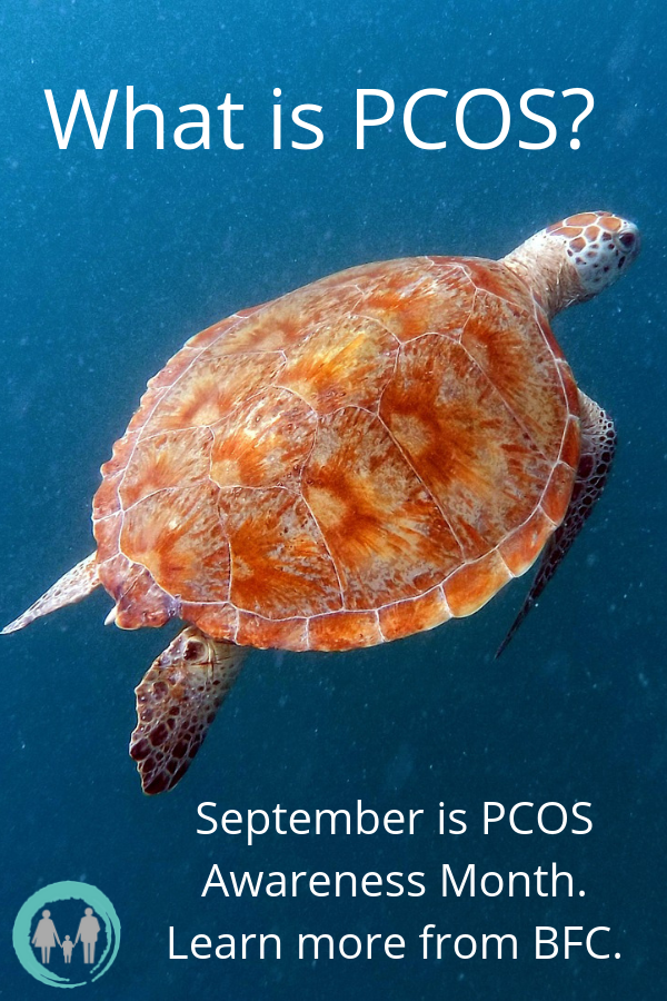 September is PCOS Awareness Month. Learn more about polycystic ovarian syndrome from the caring staff at Barbados Fertility Centre. #ivf #infertility #ttc #pcos #cysters